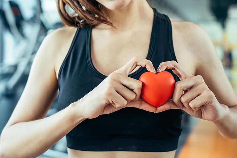 Hjerte og karsystem